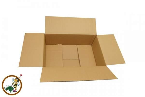 Faltkarton (WK6B) 585x380x200mm zweiwellig Braun