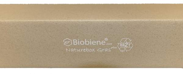 Naturebox-Graskarton-1250x100x100mm UK4