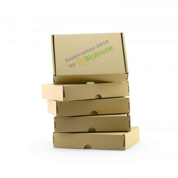 DIN B4 Maxbrief Graskartons von Biobiene mit Druck