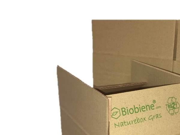 Naturebox Typ 1